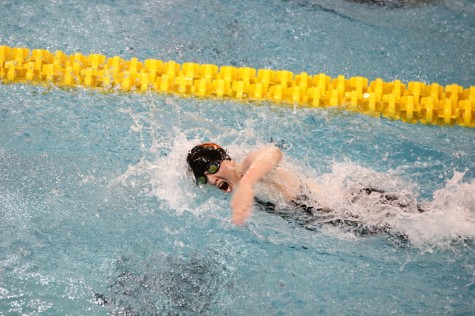 Swimming excels at state meet