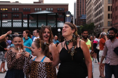 Cat lovers gather for the purrfect festival