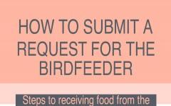 Bird Feeder hires new staff