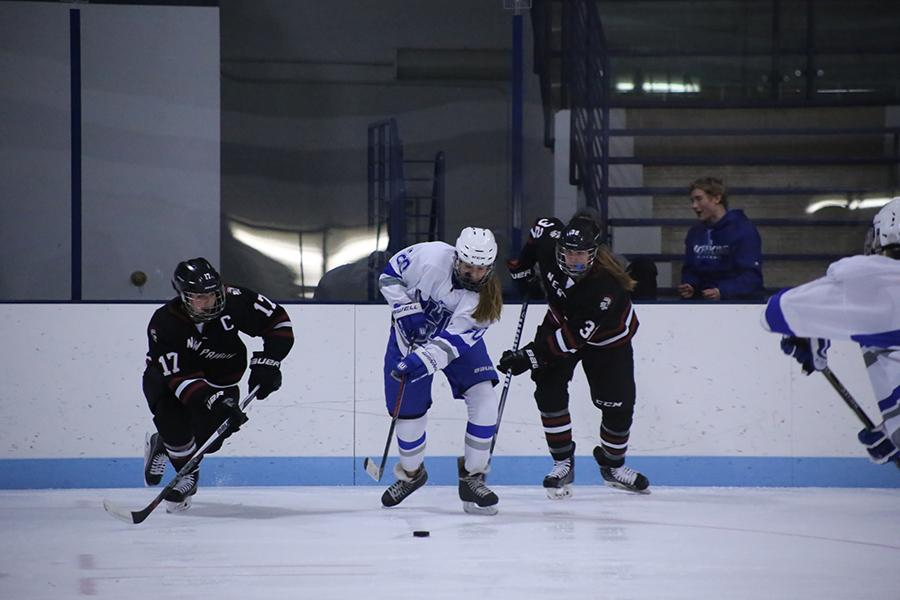Junior Katie Fredrickson, #20, chases after the puck against New Prague  Nov. 15. The Park/Hopkins team went on to win the game 8-3.
