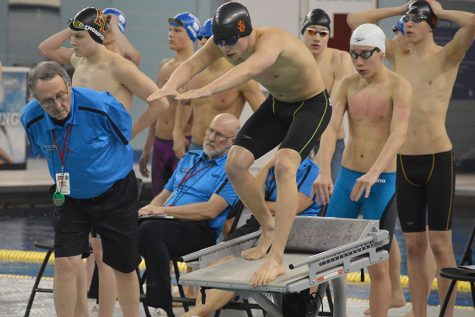 Swimmers end season on state podium