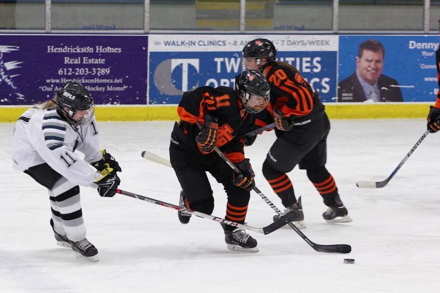 Girls' hockey finishes successful season