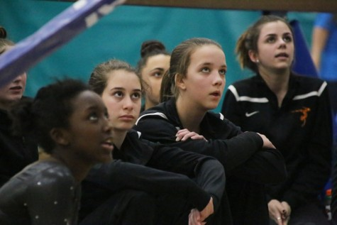 Girls' gymnastics team works hard in sections