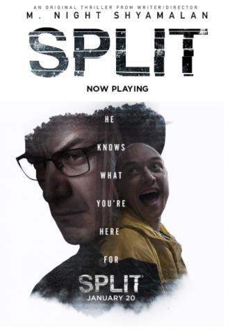 A 'Split' decision