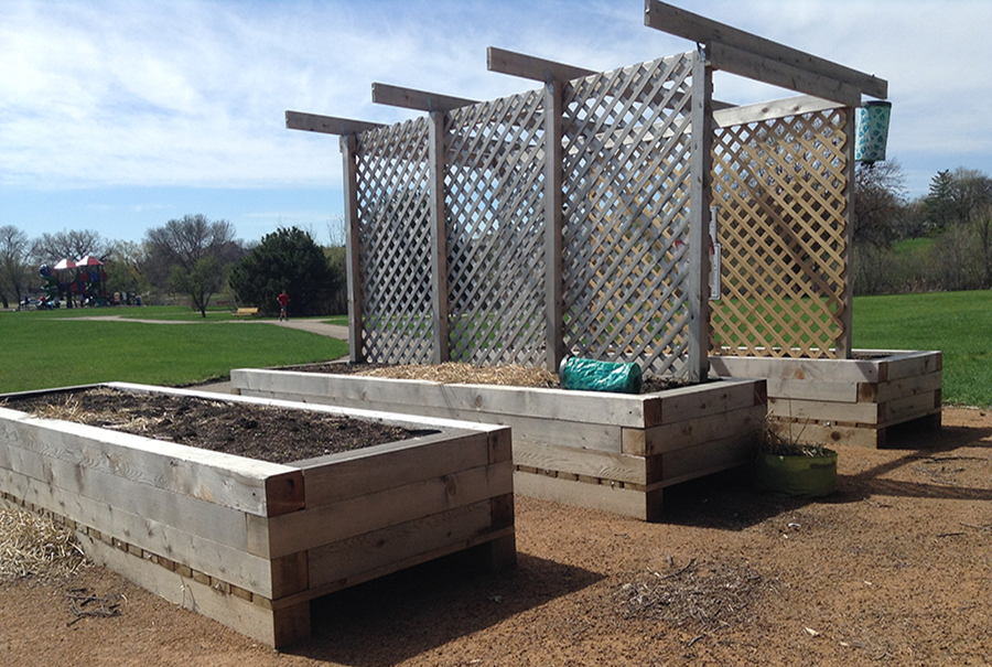 A SEEDS community garden in Louisiana Oaks. Executive director of SEEDS Curtis Wilson said he plans to engage  students in activities to better the environment.