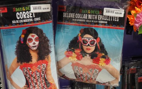 Appropriated costumes show lack of respect
