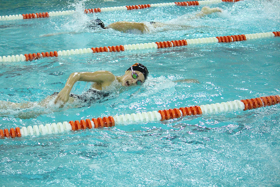 Junior Claudia Stone swims freestyle at the team's meet against Benilde - St. Margaret's at St. Louis Park Junior High on Oct. 5.