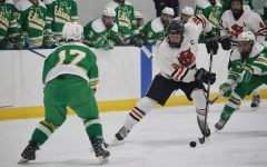 Boys' hockey loses to Edina
