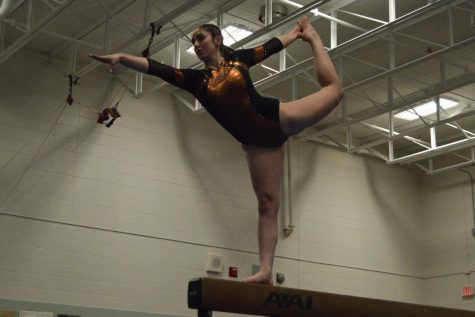Junior chosen as gymnastics captain