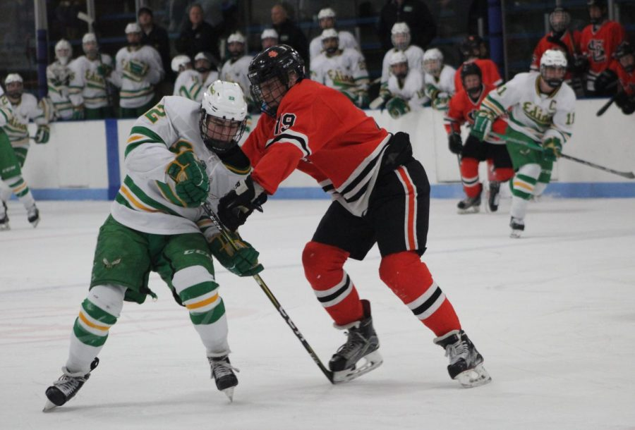 Freshman McCabe Dvorak fights Edina defense player Jake Boltmann for the puck in Park's second Section game of the season. Park lost to Edina 6-1.