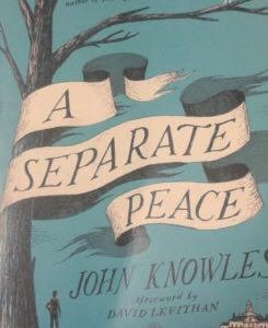 'A Separate Peace' removed from 10th grade English class