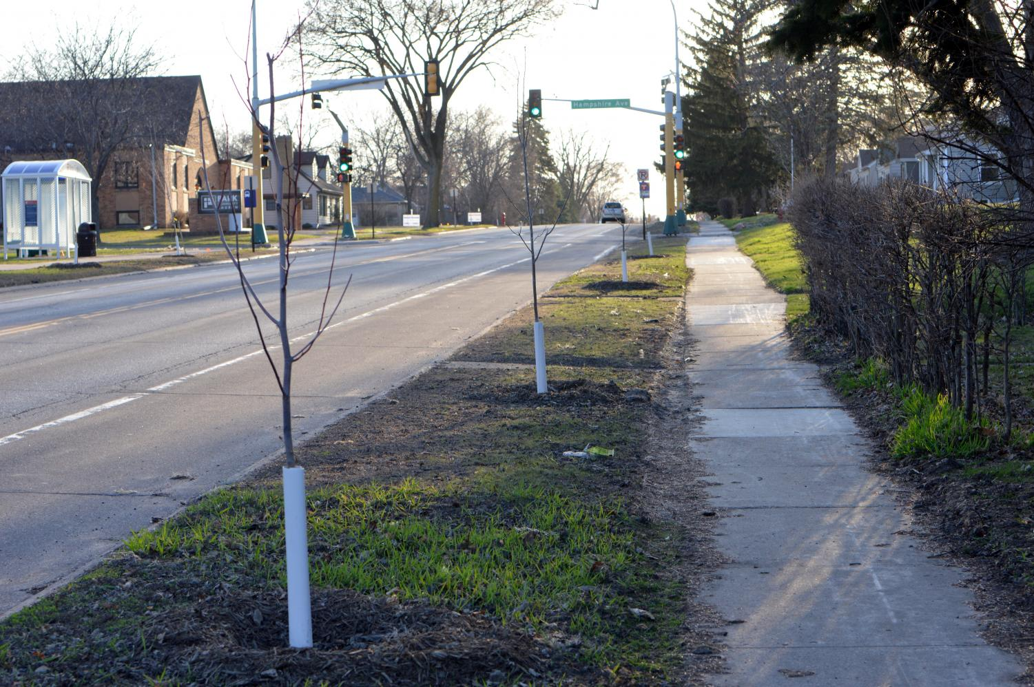 Newly planted trees near Hennepin Ave.  138 trees and 23 different varieties were planted in the 'Plant the Park' project.