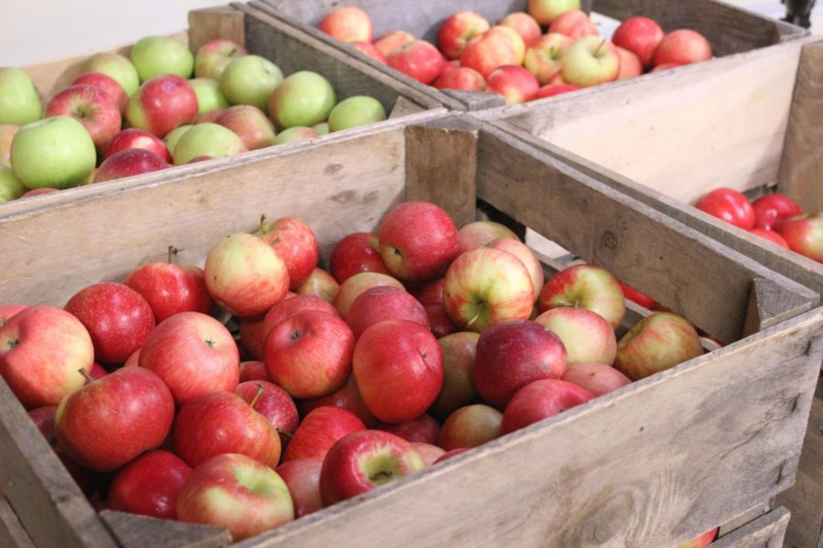 The AppleHouse sells apples, gourds and other fall items such as jam. They are open from 10 a.m. to 6 p.m. daily until early November.