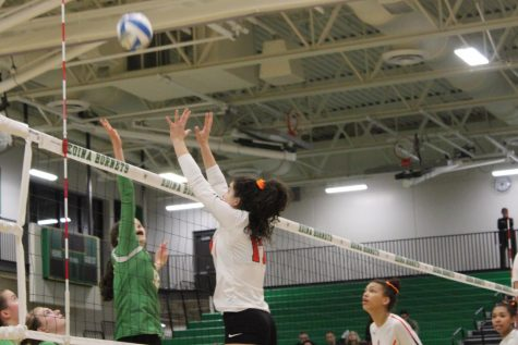 Photo Gallery: Girls' volleyball loses 3-0 to Edina