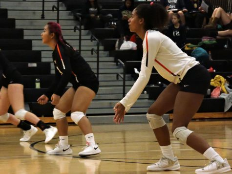 Senior captain Maddy McIntosh and junior Ivy Jones play in the match against Bloomington-Kennedy Oct. 10. Earlier they had done the dig pink dress code as shown by their pink hair and hair ties.