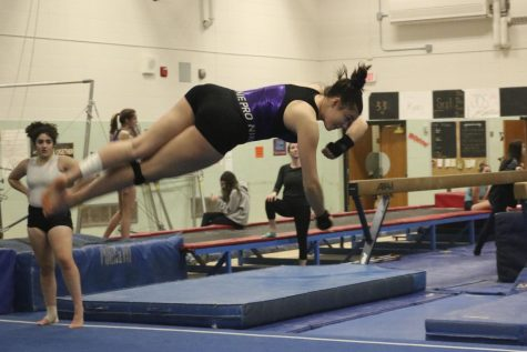 Gymnastics prepare to compete at Henry Sibley Invitational