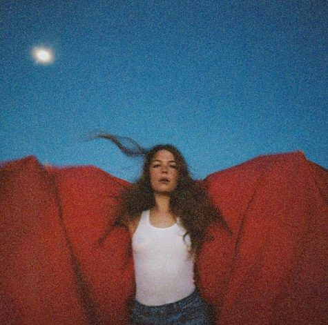 Maggie Rogers defines sound through debut album