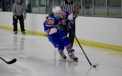 Girls' hockey loses to Edina in Section game
