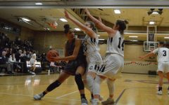 Girls' basketball season summary