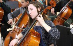 Orchestra prepares for biggest fundraising concert