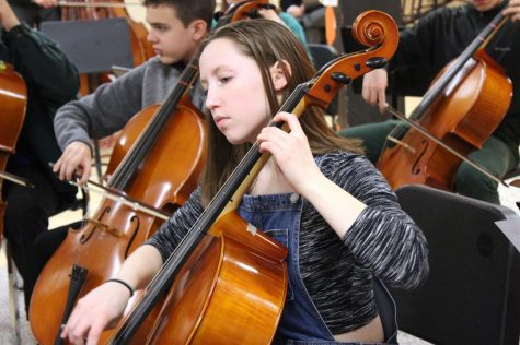 Orchestra prepares for biggest fundraising concert