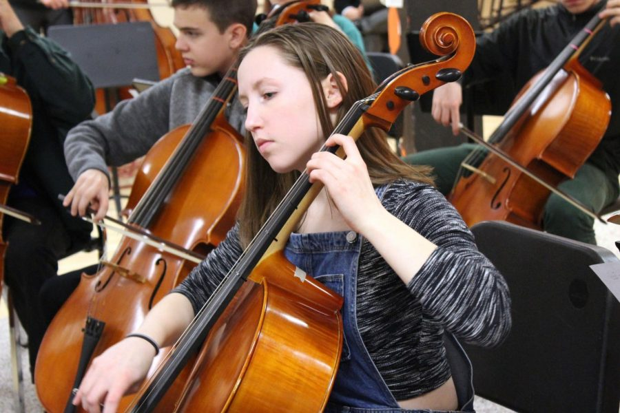 Freshman Renee McSherry is playing the cello during her fourth hour orchestra class. The SLP High School Orchestra is having their rock concert at 7 p.m. Mar.14 .in the high school auditorium.
