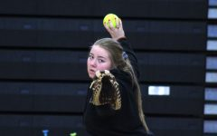 Softball finds its strengths and weaknesses