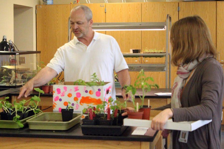 Teacher+starts+classroom+garden