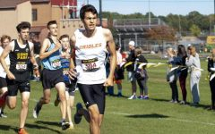 Cross country competes in Roy Griak Invitational