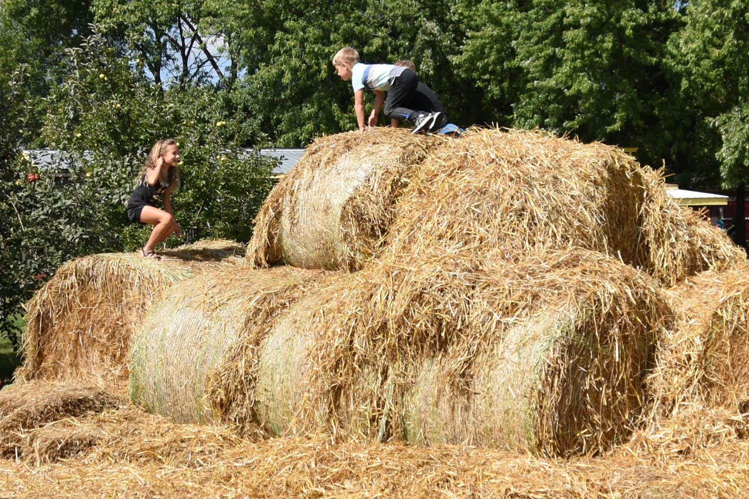 Kids play on the hay stacks at Fall Harvest Orchard Sept. 15. Entering the orchard does not require payment.