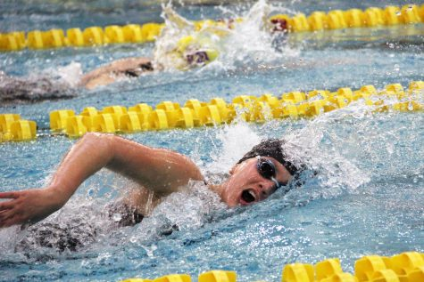 Junior Elie Grassley competes in the 500 yard freestyle with a time of 5:23.53 minutes, placing 16th overall. Park competed at the State finals Nov. 16. at the Jean K. Freeman Aquatic Center at the University of Minnesota.