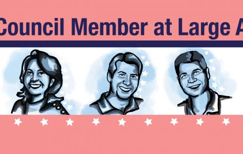 Meet the candidates for St. Louis Park council member at large A