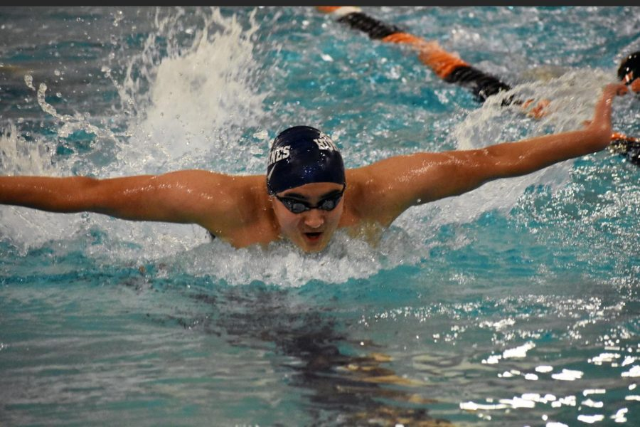 Boys' swim optimistic about upcoming season