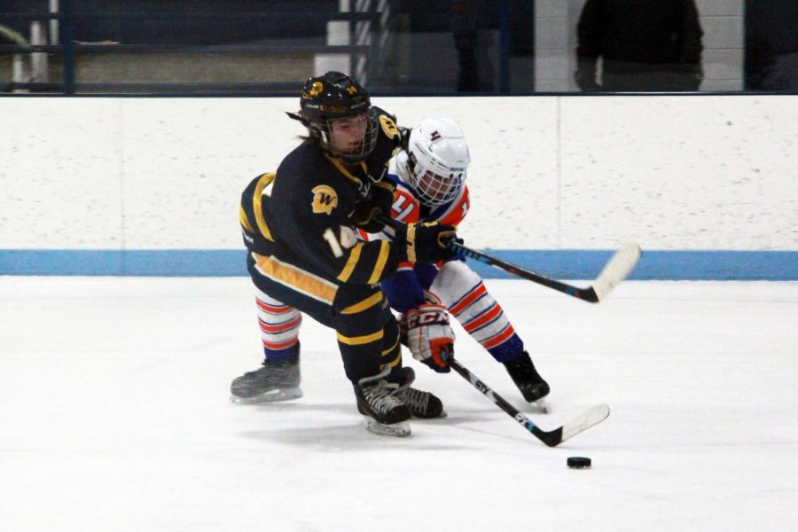 Junior Abby Meyer fights to gain control of the puck Jan. 25. Wayzata defeated Hopkins/Park 7-0.