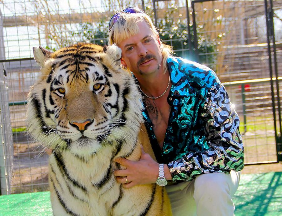Joseph Maldonado-Passage, also known as Joe Exotic, poses with one of many tigers he owned. Maldonado-Passage is the main subject of the Netflix series