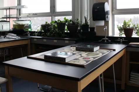 Due to some labs requiring equipment at the high school, Park students have been allowed in the building to use laboratory stations in science classrooms to complete their labs.