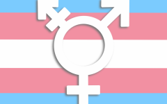 Anti-transgender bills have been proposed in 28 states, including Minnesota in 2021. Legislation targets the rights of transgender youth's access to health care and sports.